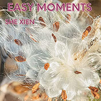 Easy Moments