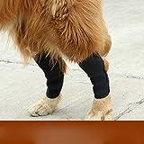 BXGZXYQ Almohadillas para Las Rodillas del Perro Nuevo Protector para Mascotas Lesión En El Perro Cirugía Cubierta Protectora Suministros para Mascotas (Color : Negro, Size : XL)