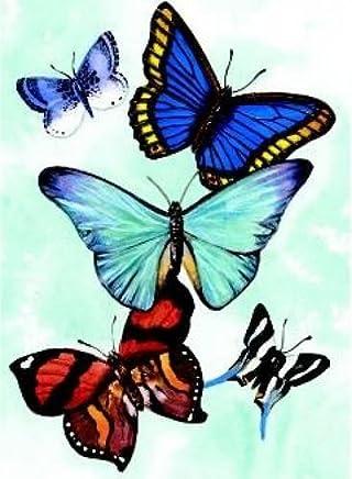 Butterfly Notebook by Sovak (2000) Paperback