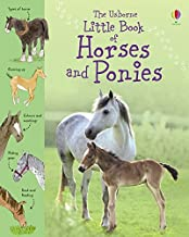 Kahn, S: Little Book of Horses and Ponies (Little Books)