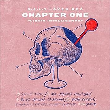 S.A.L.T (Chapter 1 - Liquid Intelligence)
