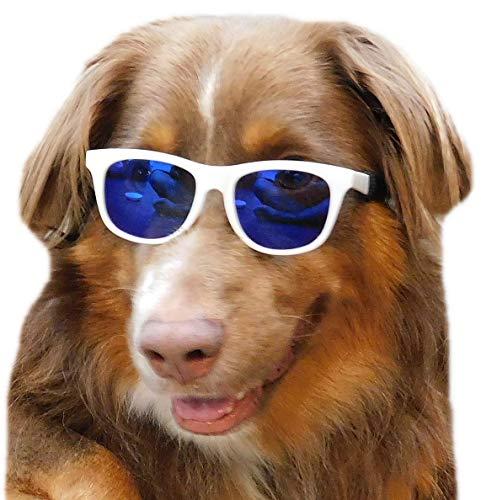 Style Vault G006 Dog pet 80s sports Sunglasses