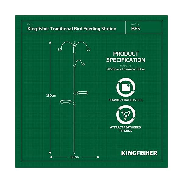 Kingfisher Bird Feeding Station