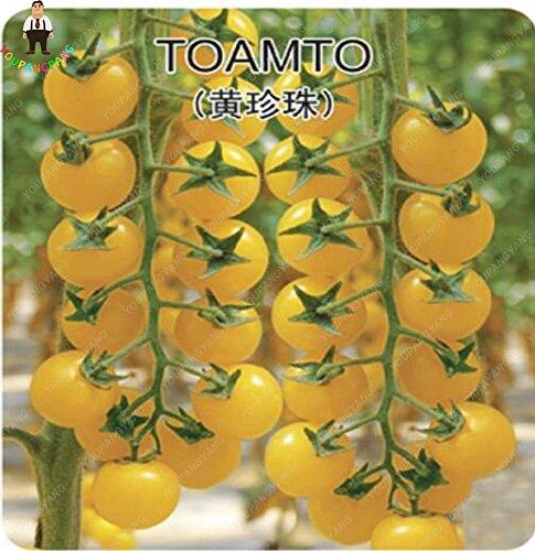 100pcs doux Graines de tomate cerise Mini légumes Graine Jaune Graines Bonsai fruits Plantes en pot Maison et jardin