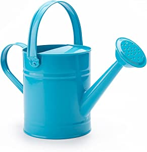 Klhamky 51oz/0.4Gallon Watering Cans Garden Galvanized Steel Metal Watering Cans for Indoor and Outdoor Plants with Detachable Spout (Blue)