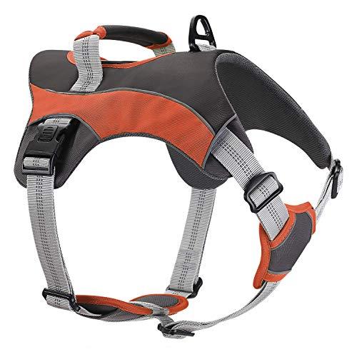 Dociote Hundegeschirr No Pull Geschirr Reflektierend Verstellbar Sicherheitsgeschirr Brustgeschirr mit Griff für Große & Mittelgroße Hunde M Orange