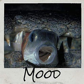 Environmental Mood