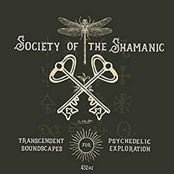 Transcendent Soundscapes for Psychedelic Exploration 432 Hz