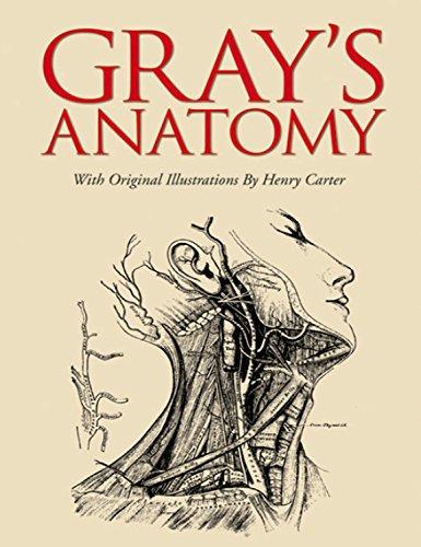 Gray, H: Grays Anatomy