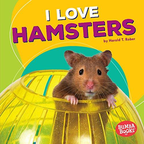 I Love Hamsters copertina