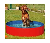 Best Dog Pools 2020: Reviews & Topics 13