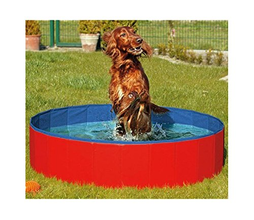 N&M Products Foldable Dog Pool/Pet Bath/Whelping Box (Large 48in x 12in, Red)