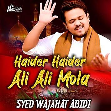Haider Haider Ali Ali Mola