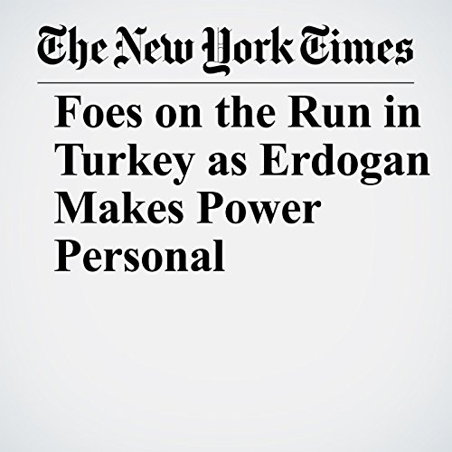 Foes on the Run in Turkey as Erdogan Makes Power Personal copertina
