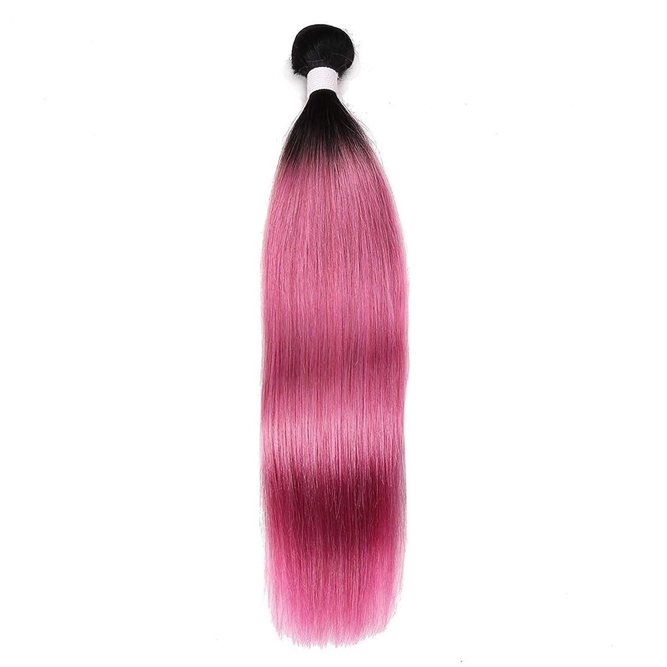 切り離す予定ペイントKoloeplf ウィッグ ローズパウダー ストレートヘア カーテン 軽量 インディアン長髪 10?18インチ レディースかつら (サイズ : 12inch)