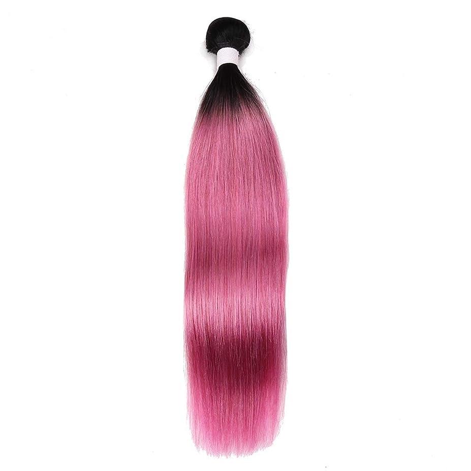 取得するそれからクラシックKoloeplf ウィッグ ローズパウダー ストレートヘア カーテン 軽量 インディアン長髪 10?18インチ レディースかつら (サイズ : 12inch)