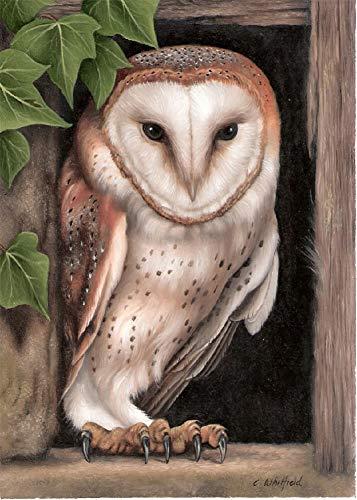 Gofission - Kit de pintura de diamantes de Tyto Alba Bird Animal por números, DIY 5D Diamond Art punto de cruz de punto de cruz, con diamantes de imitación, 30,5 x 40,6 cm (pájaro)