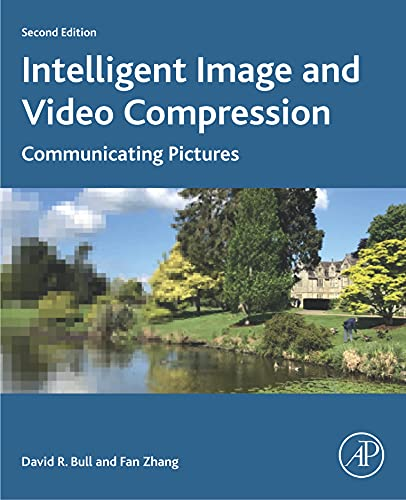 Intelligent Image and Video Compression: Communicating Pictures