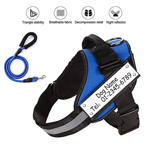 XLBAXLJ Personalisierte Hundegeschirr, Beschriftung Optional Abschleppseil Reflective Breath Einstellbare Größe für Outdoor-Reisen Walking Laufen Camping Trainings,Blue+Traction Rope,XS