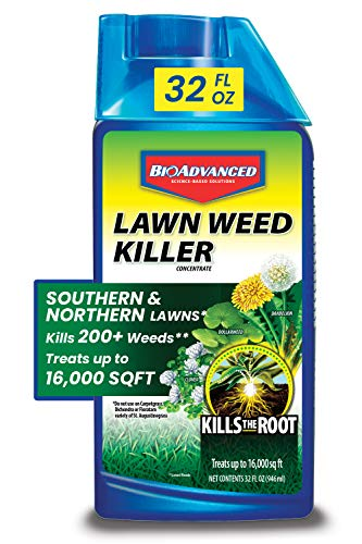 BIOADVANCED 705100A Concentrate with Root Killer for Southern & Northern Lawn Weeds, 32-Ounce