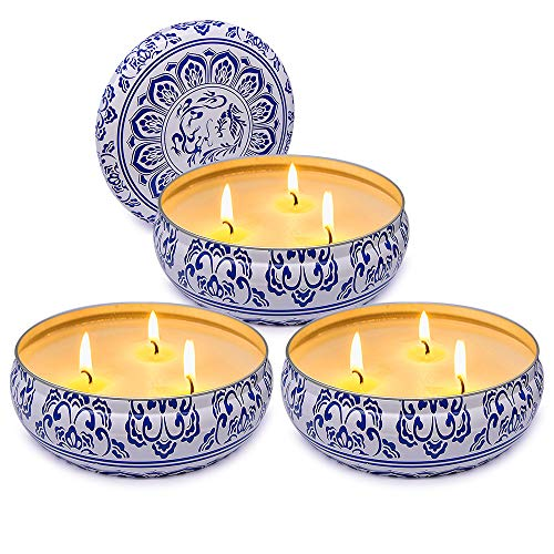Citronella Candle Set Outdoor and Indoor 3 Wick Soy Wax Candle with 75 Hours Burn - Gift Set of 3