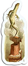 gordonstore Sticker Creature Animal This Illustration Features The Lizard Coming Out of The Animals Fauna (3