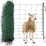 Agrarzone red de ovejas cerca de ovejas con la...