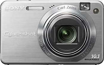 Sony Cybershot DSCW170 10.1MP Digital Camera with 5x Optical Zoom with Super Steady Shot (Silver)