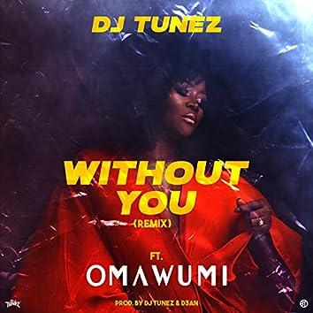 Without You Remix (Remix)