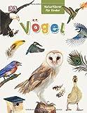 Naturführer für Kinder. Vögel