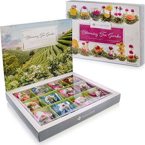 12 Teeblumen in Box verpackt