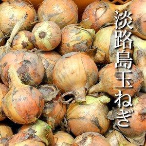 淡路島産玉ねぎ1kg(3〜5個) (10kg(30-50個))