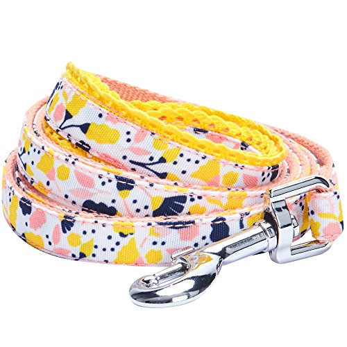 Blueberry Pet Durable Made Well Blooming Floral Print Dog Lead in Creamy White, 150 cm x 1.5cm, Small, Leads for Dogs