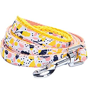 Blueberry Pet 5 Patterns Durable Made Well Floral Dog Leashes