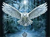 DIY Oil Paint by Number Kit for Adults Beginner 16x20 inch - White Owl, Drawing with Brushes Christmas Decor Decorations Gifts (Frame)