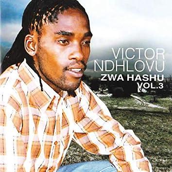 Zwa Hashu, Vol. 3