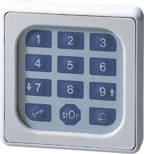 Somfy 9000028 Codetaster, Grau