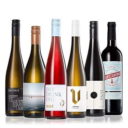 GEILE-WEINE-Weinpaket-FRUeHLING-6-x-075l-Probierpaket-mit-Weisswein-Rose-und-Rotwein-von-Winzern-aus-Deutschland-und-Spanien