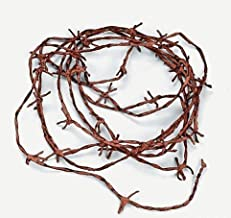 Best rustic barb wire Reviews
