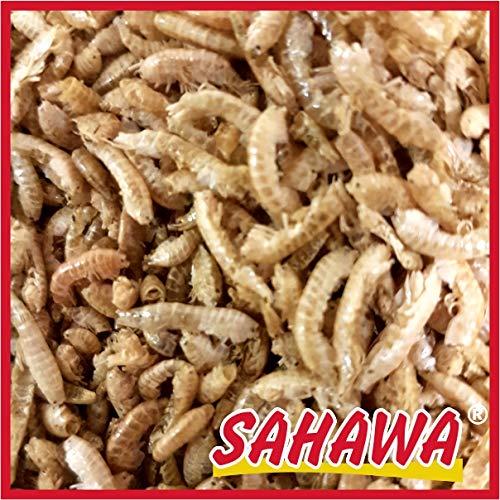 SAHAWA Bachflohkrebse 1Kg Beutel Gammarus,Fischfutter,Teichfutter,Vogelfutter,Nagerfutter,Reptilienfutter