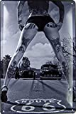 Cartel de Chapa genérico, 20 x 30 cm, Sexy Chica Pinup Pin Up Tattoo Route 66 con Cartel de Hot Rod...