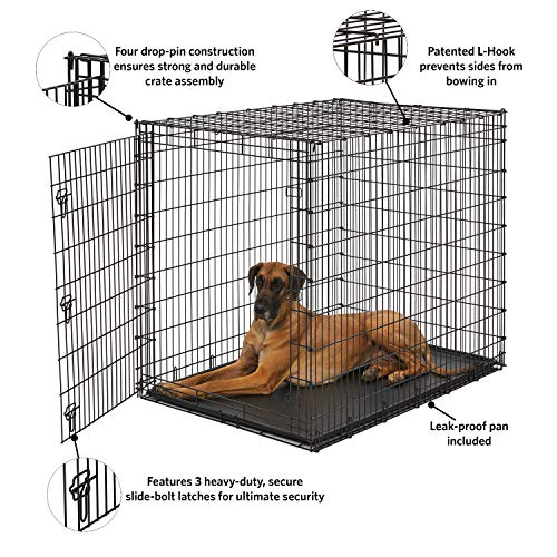 Midwest SL54DD 'Ginormus' Single Door Dog Crate for XXL for the Largest Dogs Breeds, Great Dane, Mastiff, St. Bernard