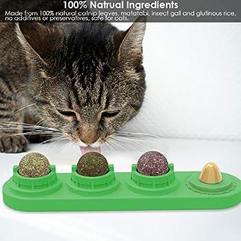 Ruqias Jouet de Cataire pour Chats Boules Comestibles de Cataire Léchage Rotatif Naturel Traite des Jouets pour Chats Chaton Chaton (Vert)
