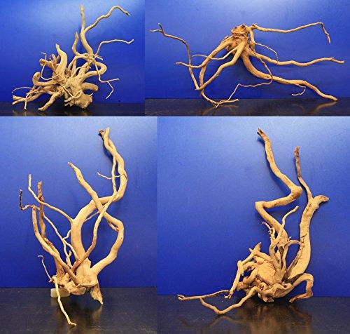 WFW wasserflora Rote Moorwurzel/Moorkienholz, Gr. L Traumwurzel 40-50cm