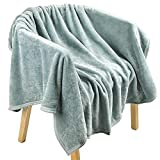 EIUE Comfortable Coral Fleece Bed Blanket,Ultra Soft Baby Nap Throw for Home,Reversible Microfiber Blanket for All Season,Machine Washable(Grey,40x60inch)