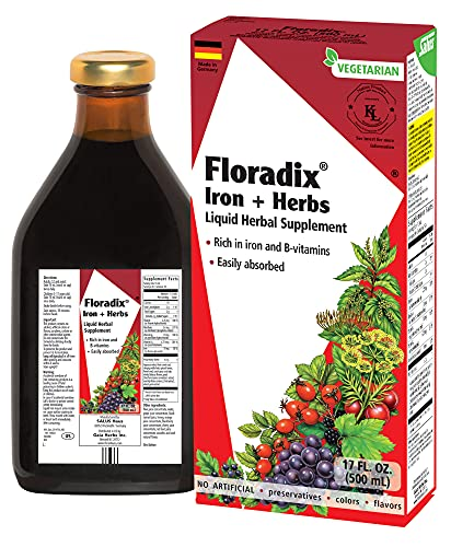 Floradix Iron & Herbs, Energy Support, Liquid Extract, 17 oz