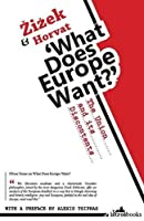 What Does Europe Want?: The Union and its Discontents by Prof. Slavoj Zizek Srecko Horvat(2013-10-01)