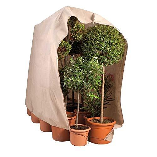 OSE Housse d'hivernage Large pour Plante 120 x 180