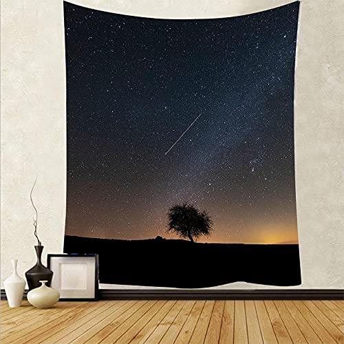 Tapiz De Pared,Tapices De Pared,Mural Tapestry Impresión 3D Hermosa Noche(95X73Cm) Decoración Del Hogar De La Pared Del Dormitorio De La Sala De Estar