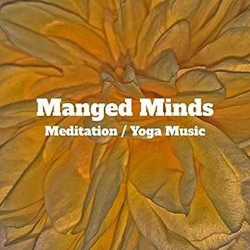 Managed Minds: Meditation / Yoga Music